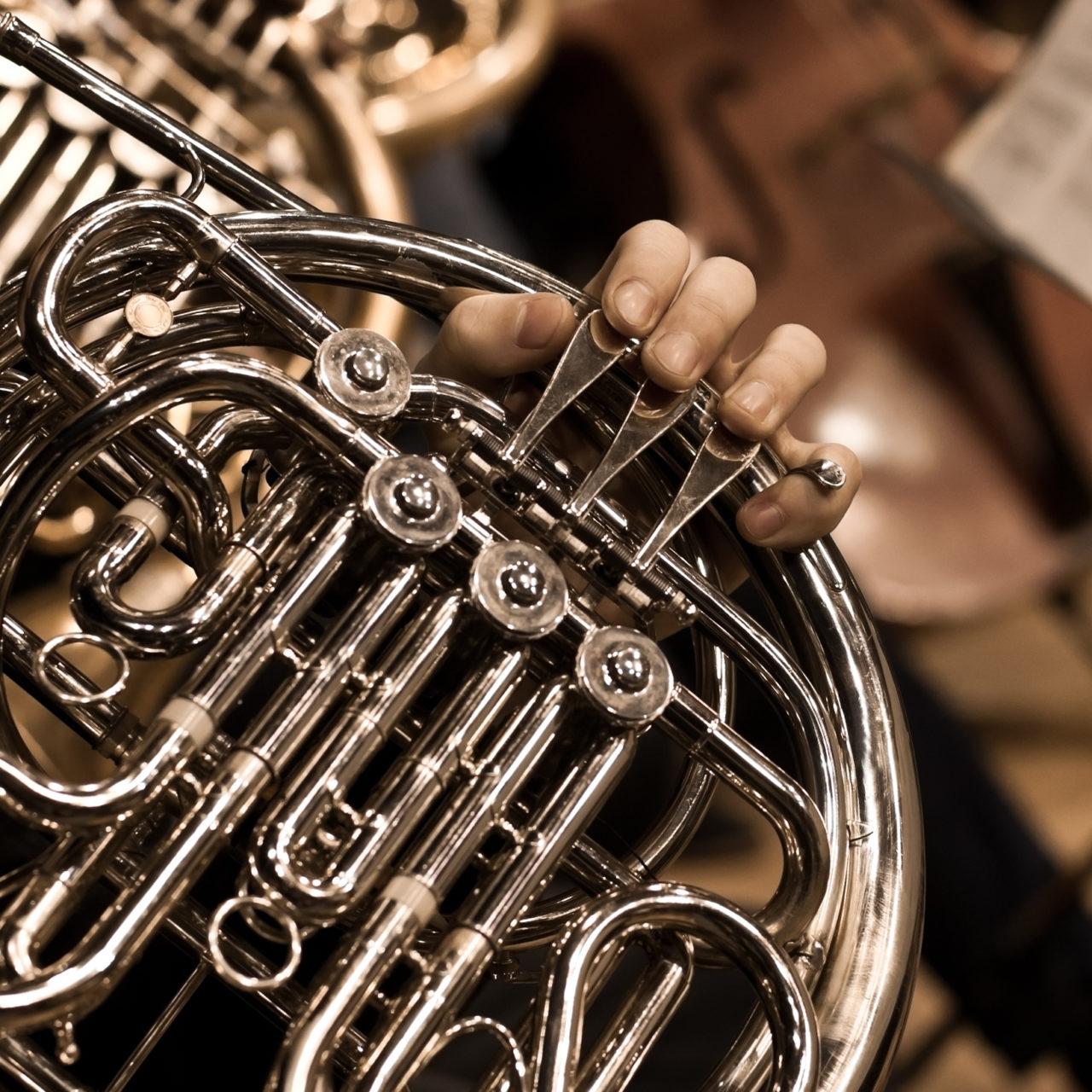 https://dom-musikschule.de/wp-content/uploads/2019/12/Horn-1280x1280.jpg